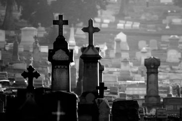 Misty Cemetery Black and White