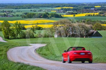 Yellow rapeseed fields and a red car