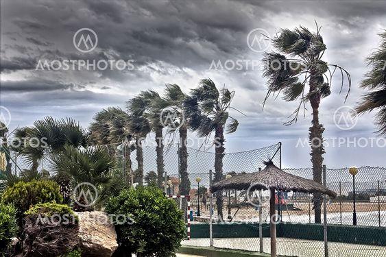 myrsky tuuli sekoitetaan rannikon kämmenet