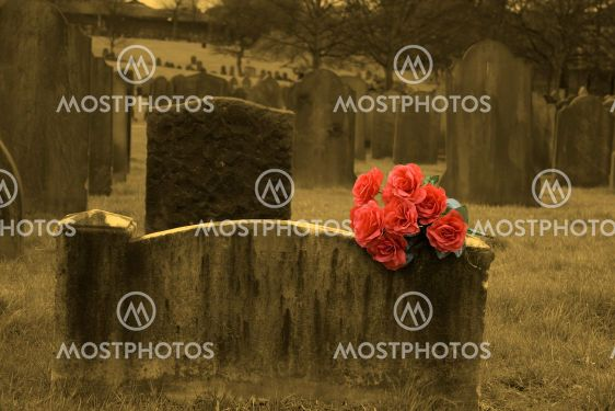 Blank headstone in graveyard (sepia) with bunch of red...