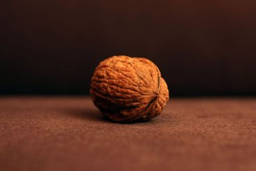 Selective focus on a walnut