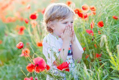 Cute kid boy with poppy flower on poppy field on warm...