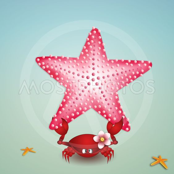 Crab with starfish