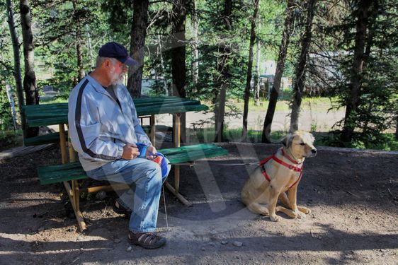 Mature Man at Campsite with Dog