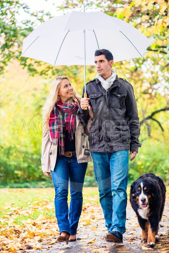 Umbrella with Bernese Mountain Dog