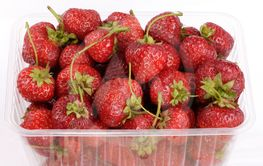 many Strawberry in plastic container
