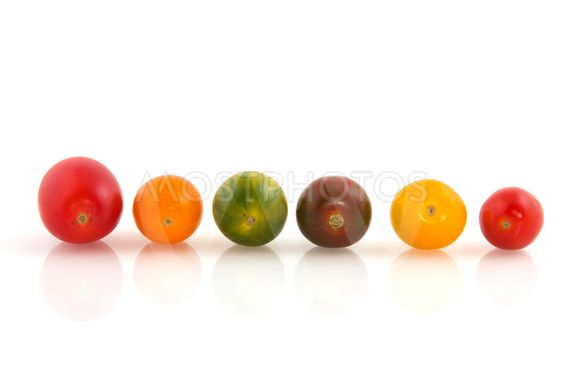 Wild colorful tomatoes