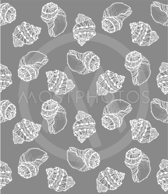 Vector seamless pattern from white seashell on gray...
