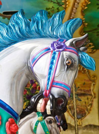 Horse, Ride