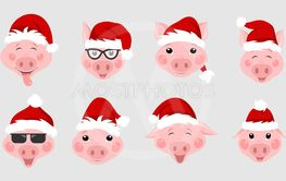 Set of Christmas Pigs with Santa Hats. Symbol 2019 New Year