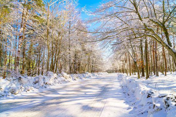 Road in winter , Japan