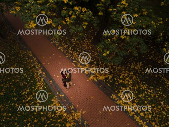 couple meet in autumn park overhead top view