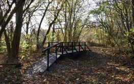 Strövstig med träbro vid Beijershamns naturreservat på...