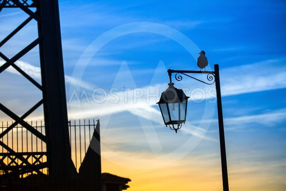 Silhouette of the street lamp and the sitting bird...