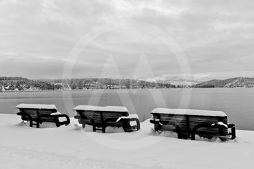 Winter Benches Black and White