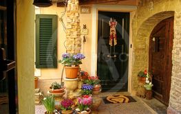 Home various flowers in pots. Design Italian courtyards