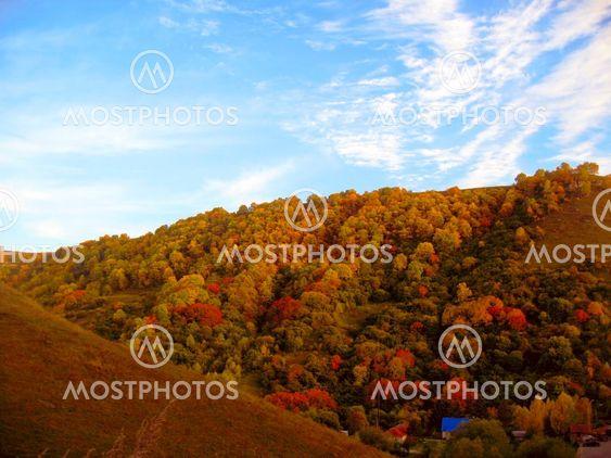 Golden autumn, blue sky and caucasus mountains