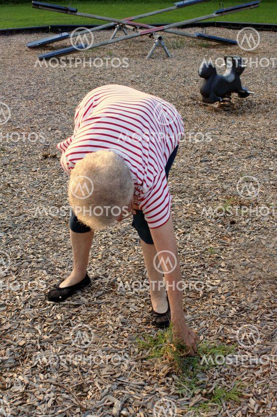 Fællesskabet Service Grandma