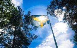 svenska flaggan i sommarljus