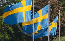 Three swedish flags in blue and yellow blowing in the...