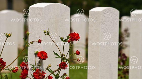 Amerikanske kirkegård i Normandiet