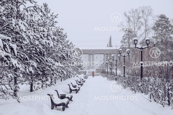 Snowfall in city park, blizzard and cold weather...