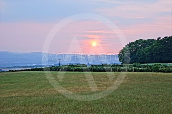 Sunset in the Fields