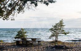 Kväll vid stranden i bödaskogen på Öland