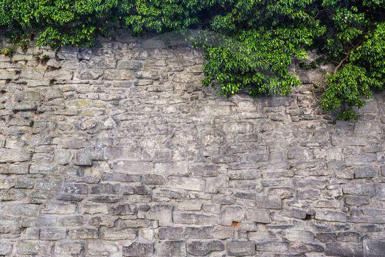 Ringmuren