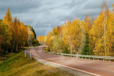 Landsväg på hösten