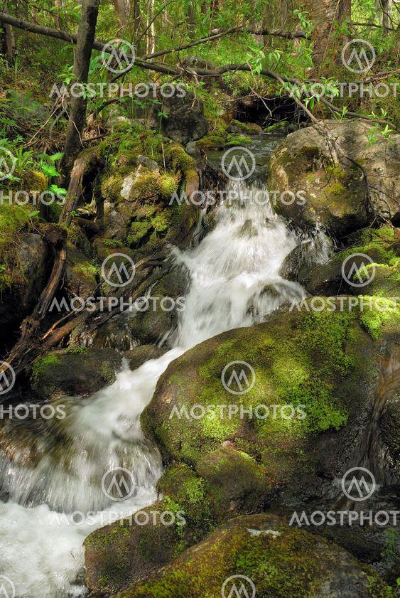 Snabb creek