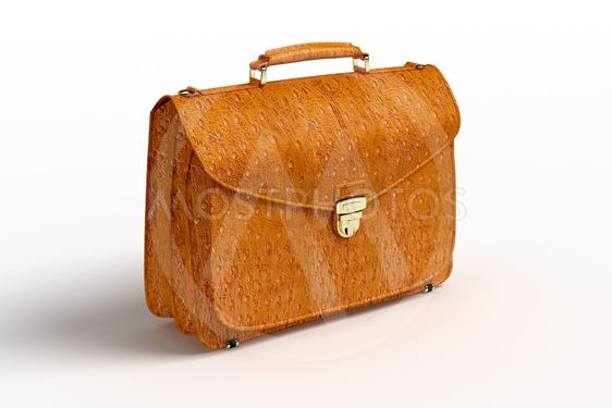 ?rocodile leather briefcase
