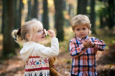 Camping children harvest mushroom in autumn forest....