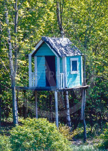 Barn har byggt en koja i skogen