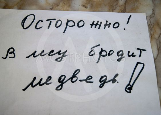 The inscription in Russian - carefully, a bear wanders...