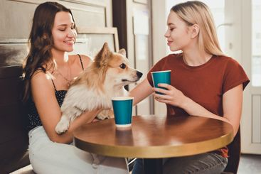 Two beautiful girls spend time in a cafe with a dog...