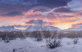 Abisko, 250 kilometers north the arctic circle