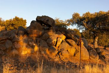 Stones on the road at the golden hour in southern Andalusia