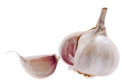 White garlic on white