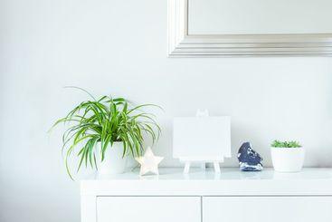 White scandinavian home interior design. Green plants in...