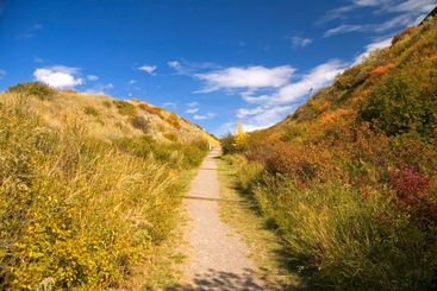 Lethbridge Coulee Path