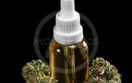 Essential cannabis oil