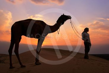 Silhouetted person with a camel at sunset, Thar desert...