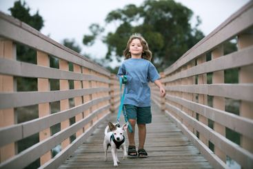 Kid and dog walk outdoors. Child with pet. Children...
