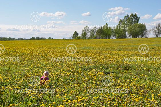 little child among flowers