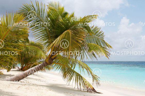 Øen i havet. Velkommen til paradis!