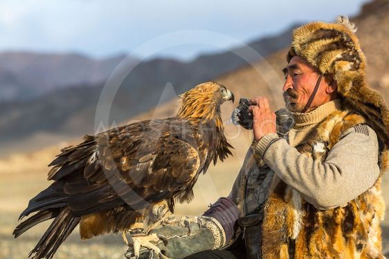 Berkutchi (Eagle Hunter) while hunting to the hare with a...