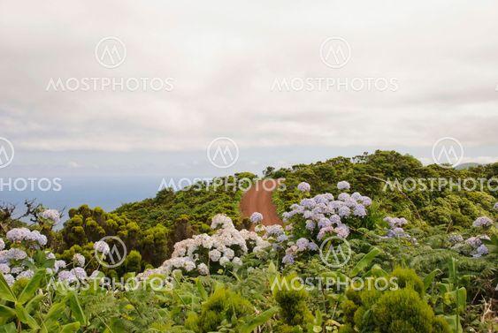Faial ø, Azorerne