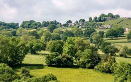 Hill Top Farms (1)