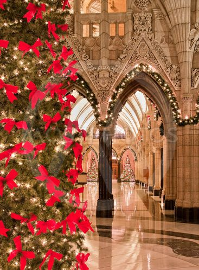 Christmas Parliament